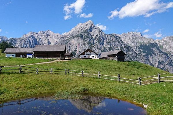 Berg - Alm in Tirol